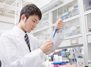抗体ライブラリー, 一本鎖抗体, Fab型抗体, 研究開発