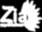 ZYW Logo White.png