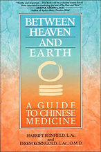 between heaven and earth book image_edit