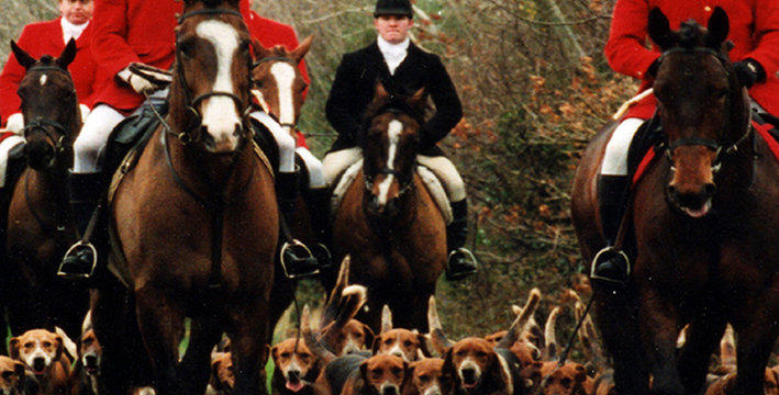 The Duhallow Foxhounds - Buy any 3 DVDs for the price of 2 - click & see below!