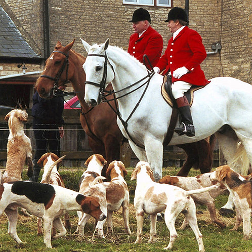 The Cottesmore Hunt - Buy any 3 DVDs for the price of 2 - click & see below!