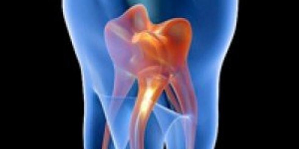Procesos endodóntico / restauradores