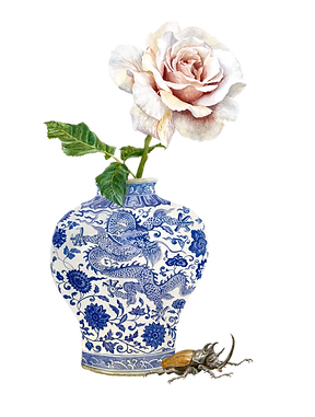 botanical illustration, watercolour painting, chinoiserie, rose, beetle, blue and white