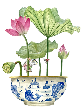 watercolour painting, botanical illustration, chinoiserie, blue and white, koi fish, water lilies, frog and ladybird