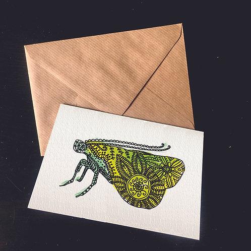 Moth | A6 greetings card | blank inside