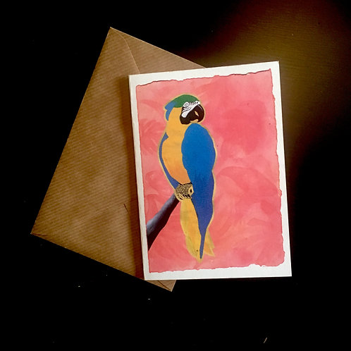 Parrot on Pink | A6 greetings card | blank inside