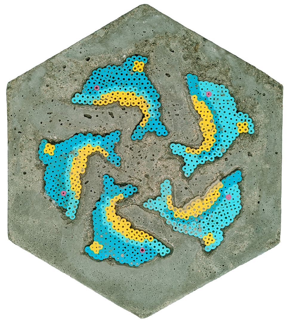 Dolphin Paver