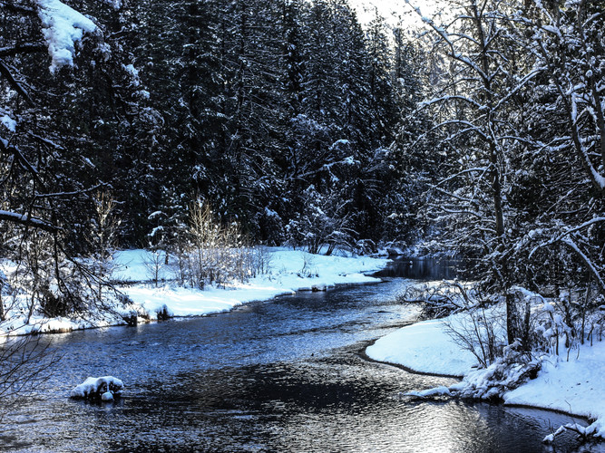 Winter Riverscape