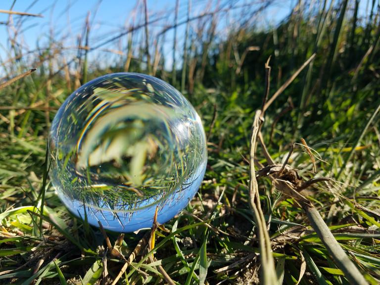 Grass Sphere