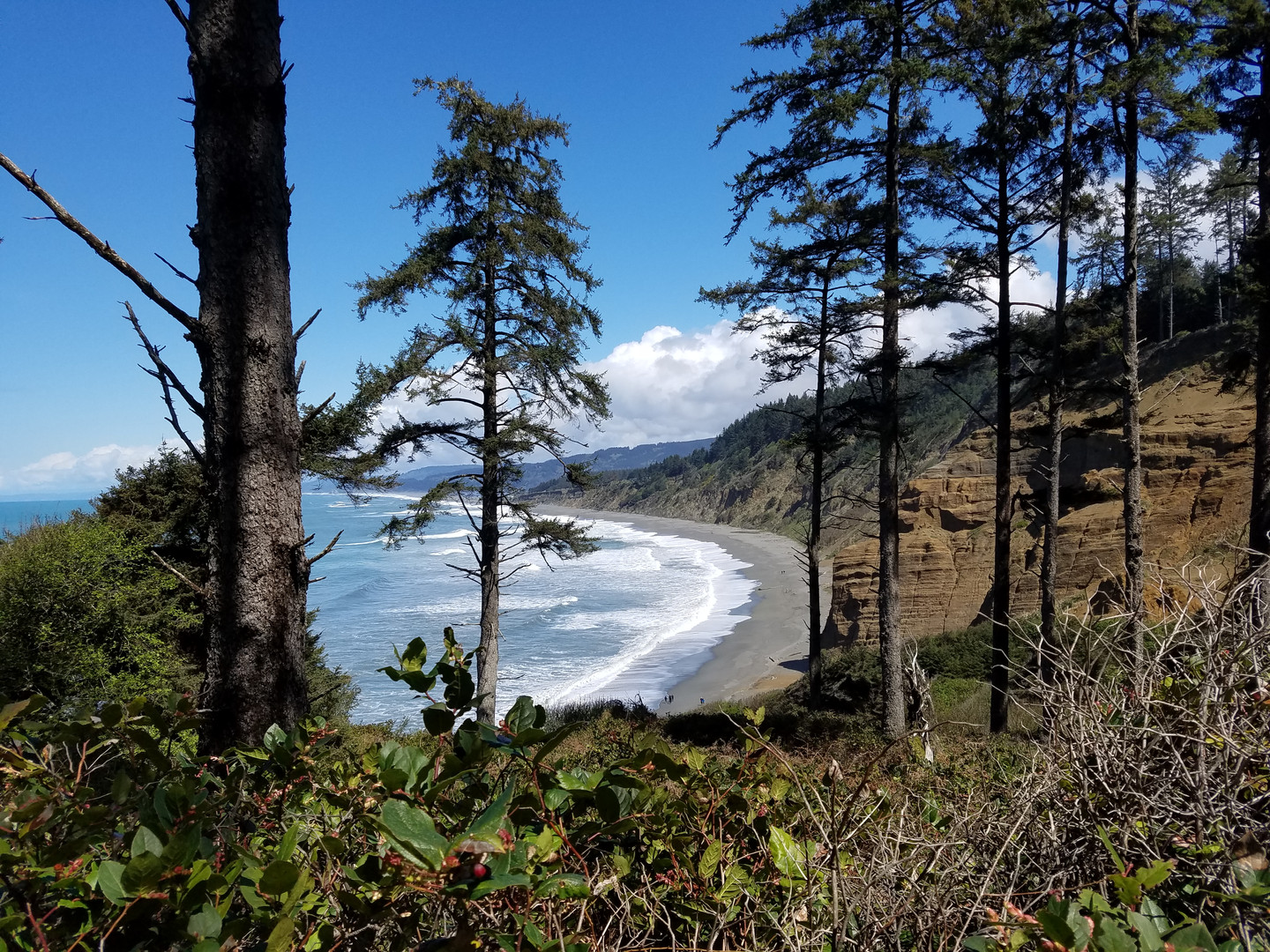Agate Beach at Patrick's Point