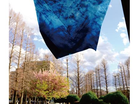 【Exhibition 2020】「現在の青図-記憶の窓・Sightama 2020-」ヒアシンスハウスで展示します。