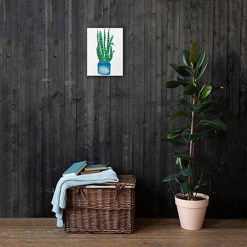 Quarantine Snake Plant- ANoelleJay Canvas Print