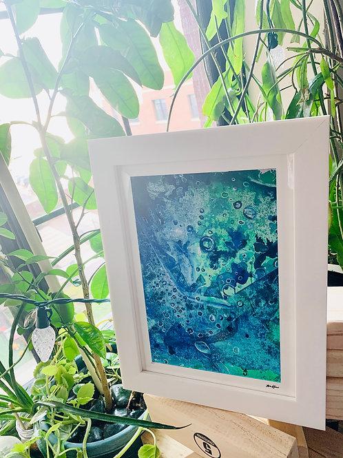 White Framed print of Sea Leaves, Environment
