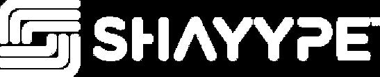 shayype_logo_white_391.png