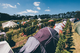 Camping in the vines by Marcin Reweda