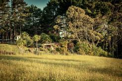 Potting Shed Cabin & Alfresco area