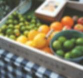 Frutas , Tropical Fruits