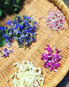 Wildkräuter-Blüten.jpg