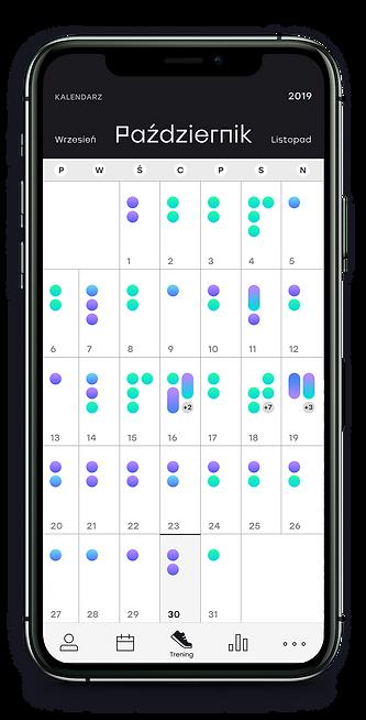 iphone 11 pro kalendarz.png