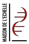 logo_échelle_3.png