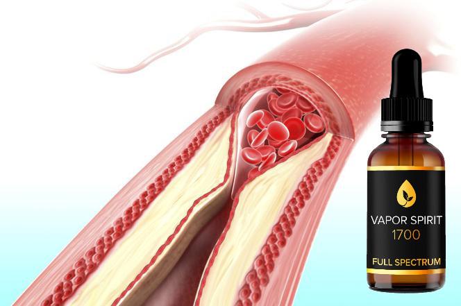 cbd für arterien