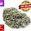 Thumbnail: Harlequin CBD Cannabis-Blüten Glashaus / Indoor, 1kg