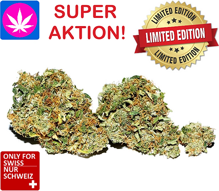 CBD cannabis flowers - Swiss Kush - Therapy CBD from 4gr. up to 250gr.