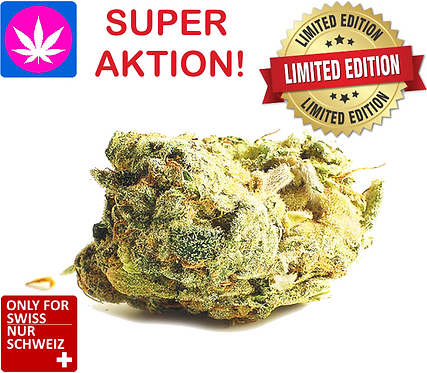 CBD cannabis flowers - Green Sensation from 4gr. up to 250gr.