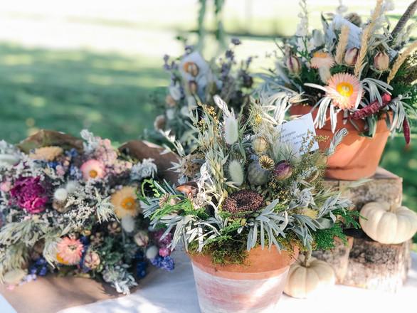 dried flower pretties