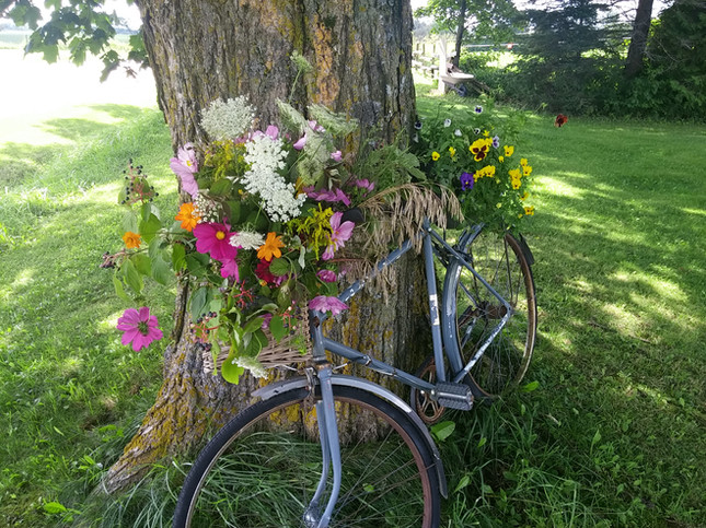 a bike built for blooms