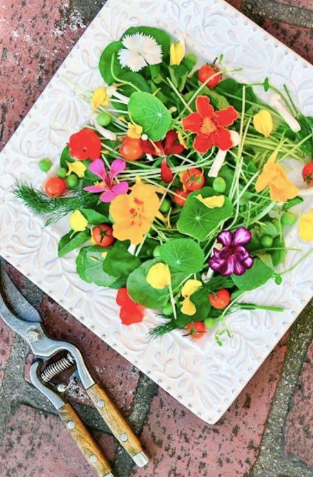 Edible Spring Garden