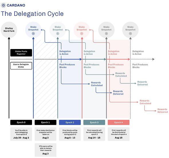delegationcycle.png
