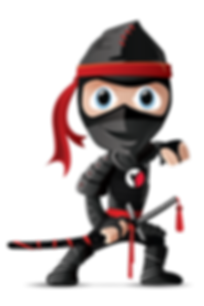 Farrell's Birthday Ninja