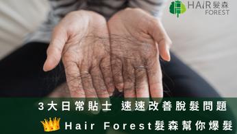 3大日常貼士 速速改善脫髮問題   Hair Forest髮森幫你爆髮