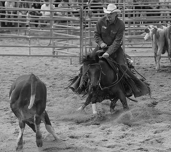 Countrysänger Rob Georg mit seinem Pferd Primetime Shorty am Rind