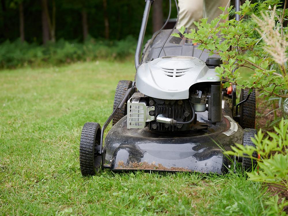 Petrol lawnmower, changes to E10 fuel when using garden equipment