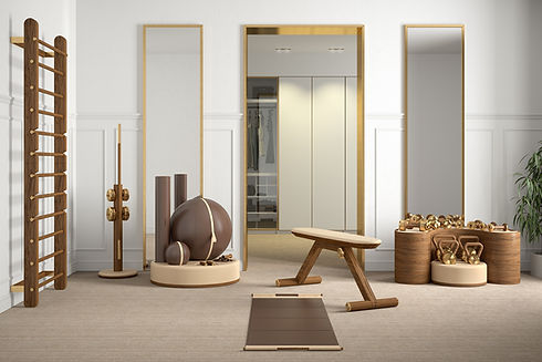 PENT luxury fitness home equipment.jpg
