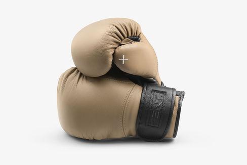 Raxa_Premium_Boxing_Gloves.jpg
