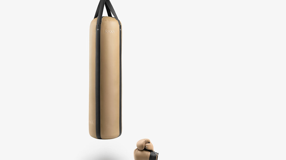 PENT. Luxury Leather Punching Bag and Gloves