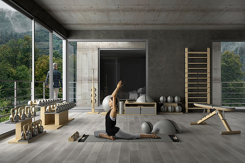 pent_luxury_home_gym_equipment.jpg