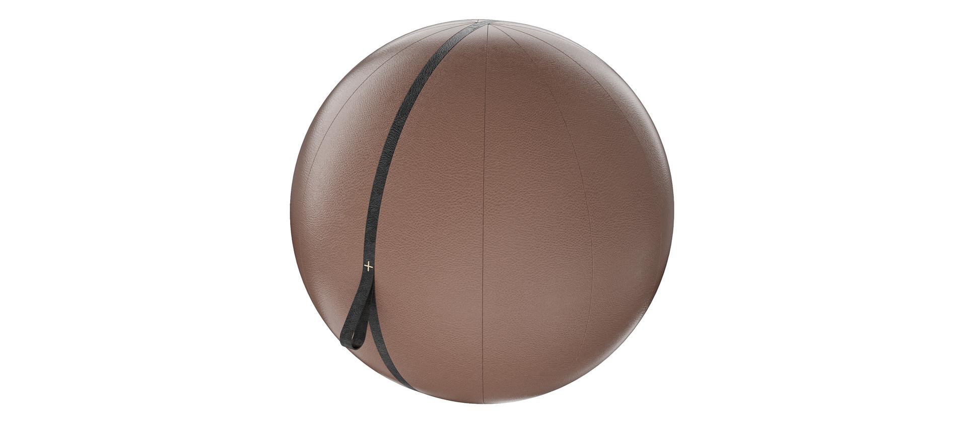 MESNA luxury leather gym ball.jpg