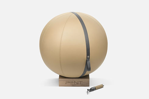 MESNA Gym Fitness Ball with leather cove