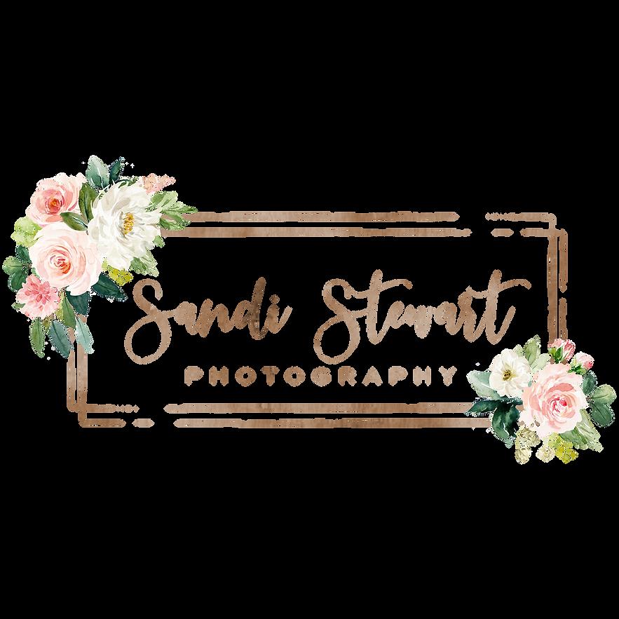 51079 Sandi Stewart Logo.png