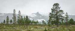 Dag7_SnøfallIFjellet2