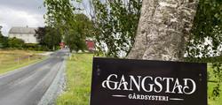 D12_GangstadYsteri
