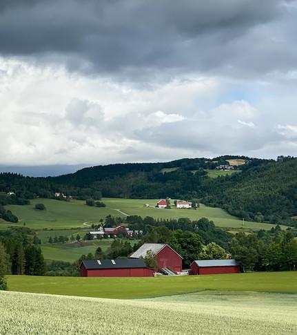 Landsbrukslandskap Inderøy