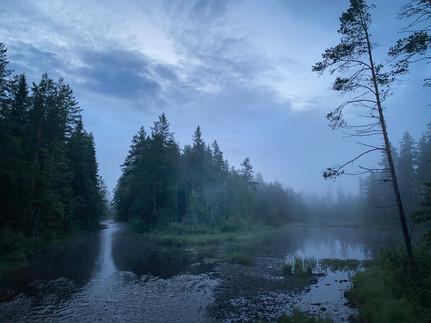 Tåkenatt på Finnskogen
