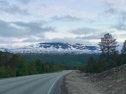 D17_Saltfjellet