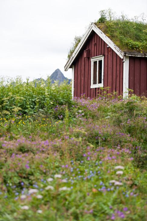 2012_BilturNN_Nordland_Vesterålen_Tinden