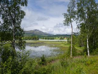 D12_HoylandetFintVanniSolskinn.jpg